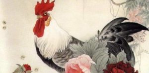 Year of the Rooster 2017: color, element