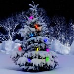 beautiful christmas trees pictures